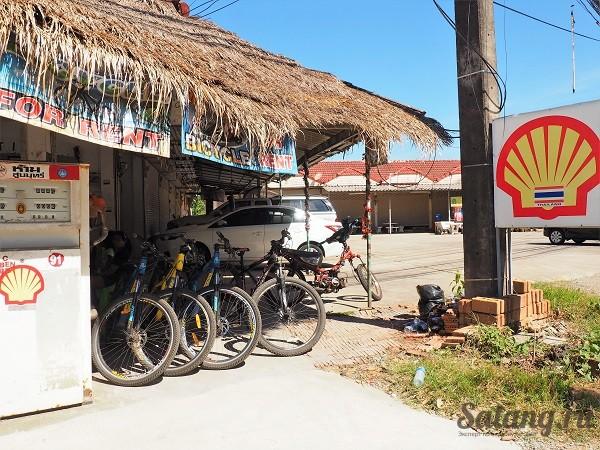 Велосипеды в аренду недорого