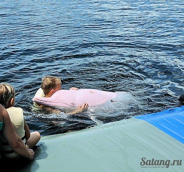 Дельфинарий у острова Ко Чанг
