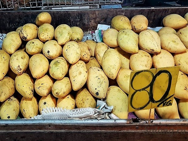 Лучшие и дешёвые фрукты вы найдете на шоссе!